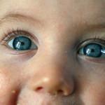 目の不調も春のめんげんの影響?